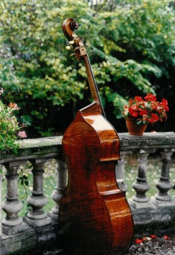 bass-Elias model, one piece back